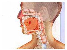 过敏性鼻炎为什么反复发作
